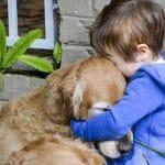 7 راهکار برای کاهش استرس حیوان خانگی در ملاقات با دامپزشک